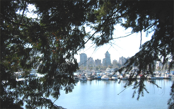 Vancouver City from Gardens of Stanley Park